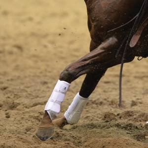 Classic Equine Air Wave EZ Wrap II - Hind