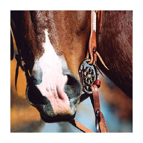 Classic Equine Clover Center D-Ring Snaffle Bit