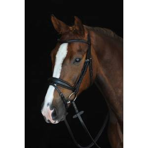 Collegiate Mono Crown Raised Bridle with  Flash
