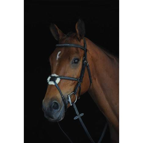 Collegiate Mono Crown Fancy Stitched Raised Figure 8 Bridle