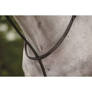 Collegiate Fancy Stitched Raised Standing Martingale ll