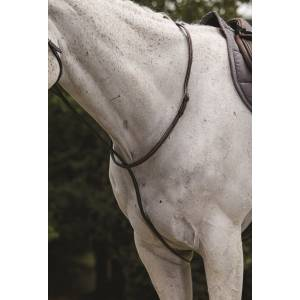 Collegiate Raised Standing Martingale ll