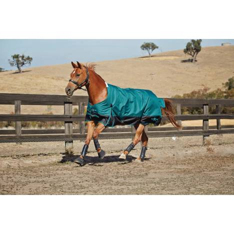 Saxon 1200D Standard Neck Turnout Blanket With Gusset ll-Heavy Weight