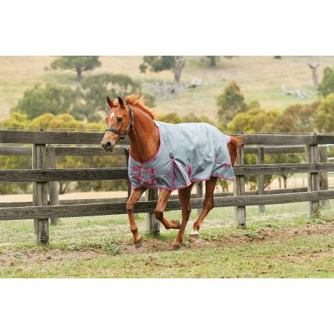 Saxon 1200D Standard Neck Turnout Blanket With Gusset ll-Lite