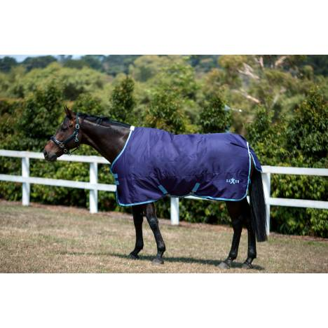 Saxon 600D Standard Neck Turnout Blanket Iv-Medium