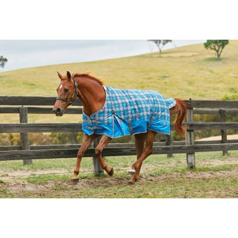 Saxon 600D Standard Neck Turnout Blanket With Gusset ll-Medium