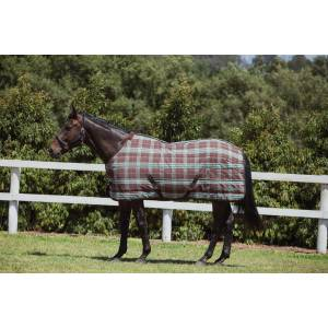 Saxon PP Standard Neck Stable Blanket ll-Medium