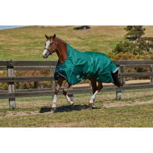 Weatherbeeta Comfitec Plus Dynamic High Neck Blanket-Lite