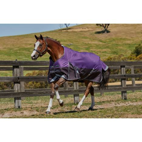 Weatherbeeta Comfitec Plus Dynamic Standard Neck Blanket-Medium