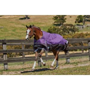Weatherbeeta Comfitec Plus Dynamic Standard Neck Blanket-Medium/Lite