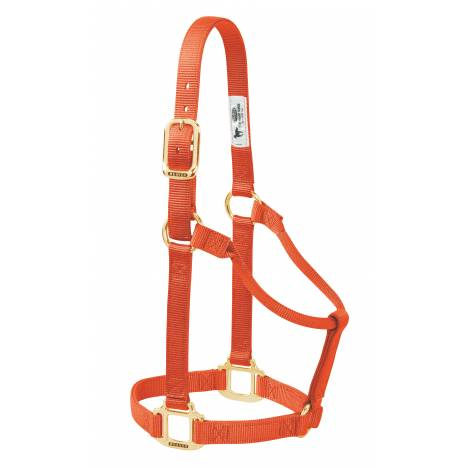 Weaver Original Non-Adjustable Nylon Halter
