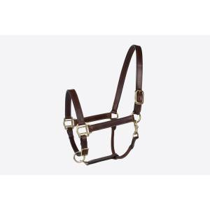 Millstone Leather Halter With  Brass Hardware
