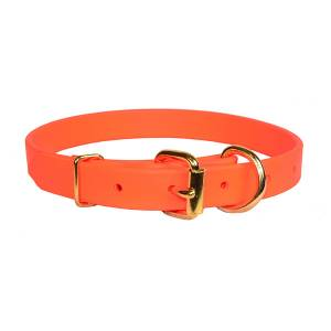 Perri's Beta Dog Collar