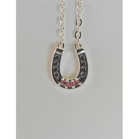 Western Edge Crystal Stones Horseshoe Necklace