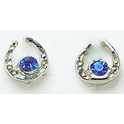 Western Edge Small Horseshoe with Crystal Stones Earrings