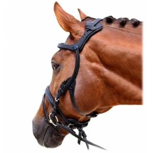 Stubben Freedom Combined Bridle (Flash)