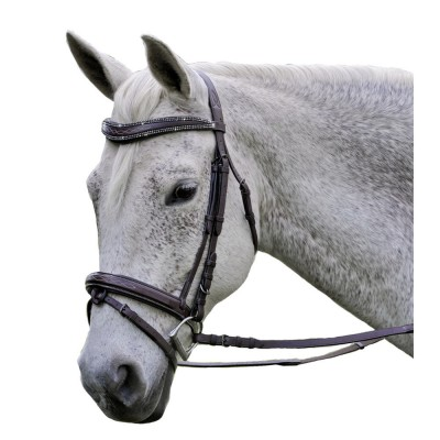 Exselle Elite Fancy Stitched Padded Bridle Flash Caveson with Extra Brow