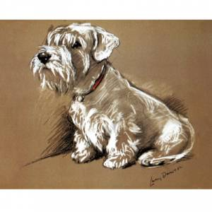 Porter Fine Art Dog Prints - Bundle