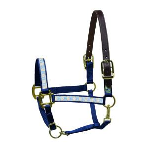 Perri's Leather Ribbon Safety Mini Halter - Ribbons