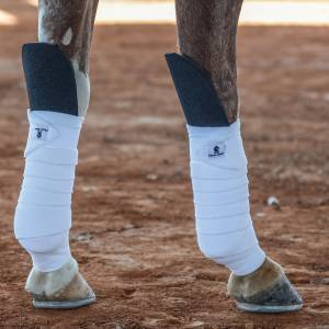 Classic Equine Knee Guard - Pair