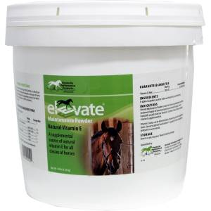 Kentucky Perf Elevate Maintenance Powder Supplement For Horses