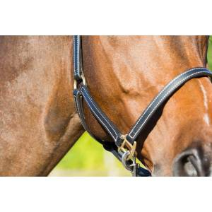 Horze Fremont Leather Halter