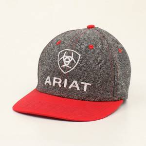 Ariat Mens Embroidered Center Logo Two Color Cap