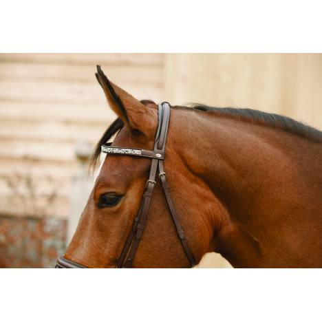 Lami-Cell Seashell Combined Noseband Bridle