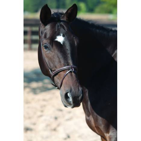 Lami-Cell Flash Noseband