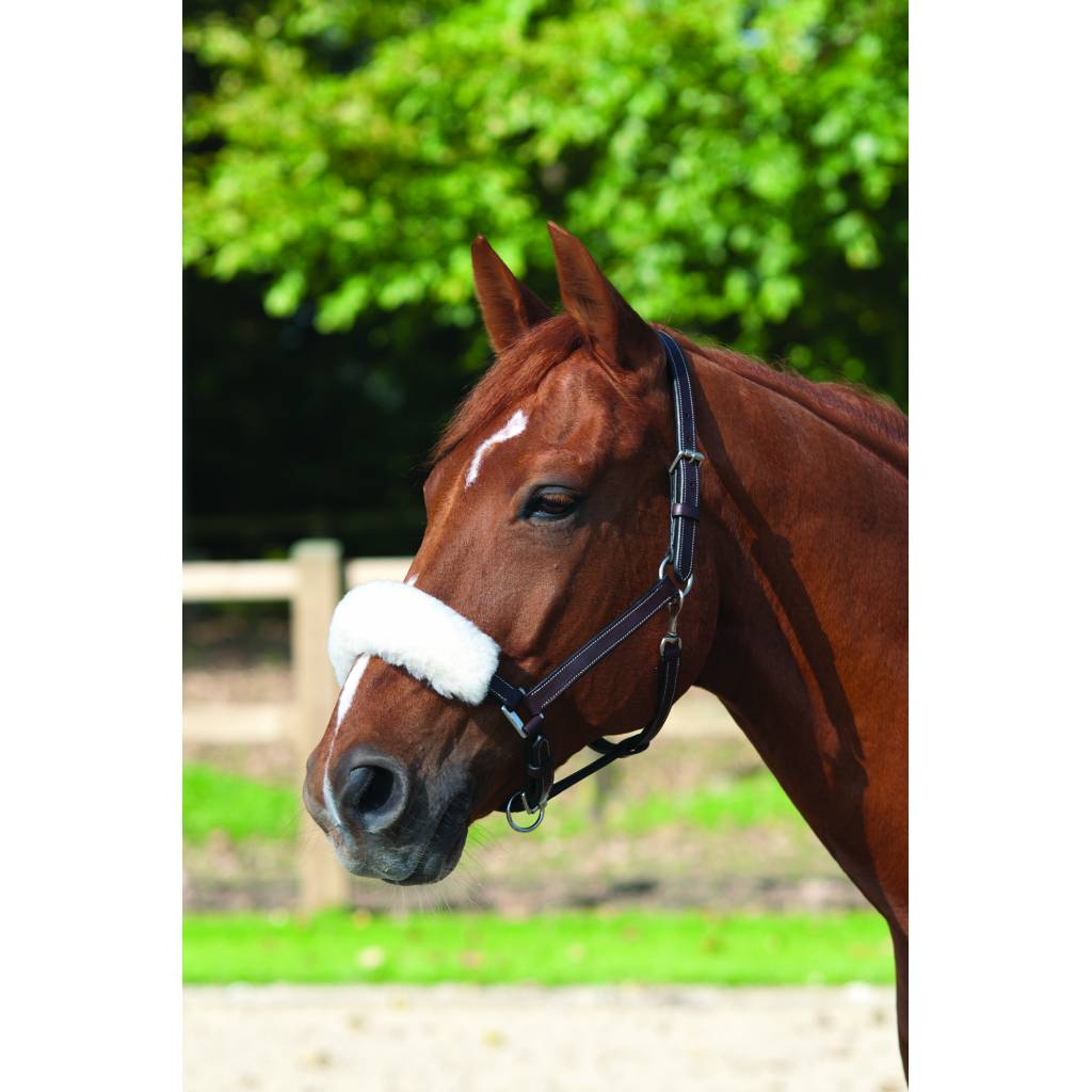Lami-Cell Wool Noseband Cover