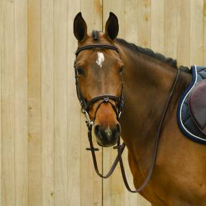 Lami-Cell Classic Bridle