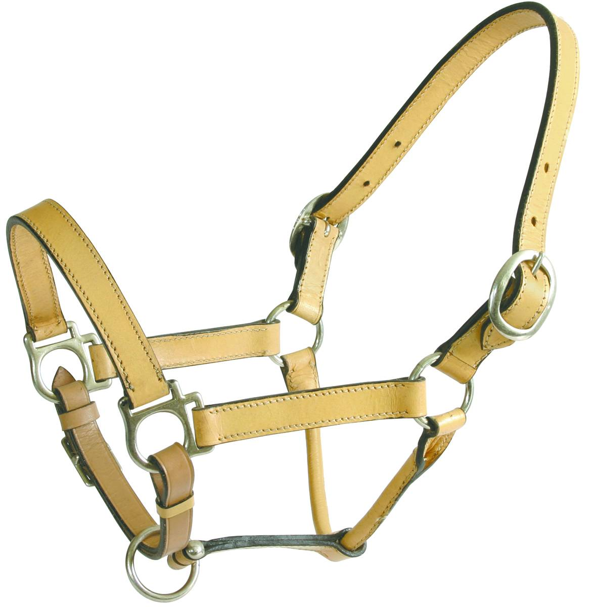 Action Plain Adjustable Leather Show Halter