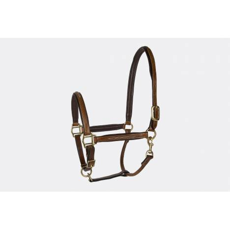 Lettia Padded Leather Halter