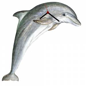Intrepid Bottle Nose Dolphin Clock