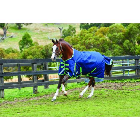 Weatherbeeta Comfitec Plus Dynamic Standard Neck Blanket-Lite