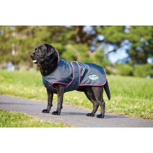 Weatherbeeta Windbreaker 420D Deluxe Dog Coat - Black/Boysenberry