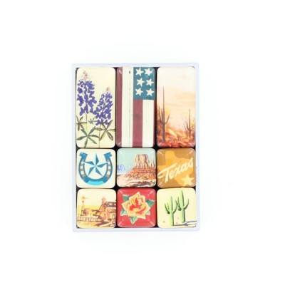 Western Moments Texas Magnets