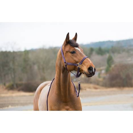 Horze Spirit Halter & Leadline Set