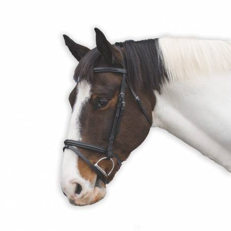 Loveson Bridle