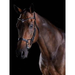 Collegiate Comfitec Crystal Bridle