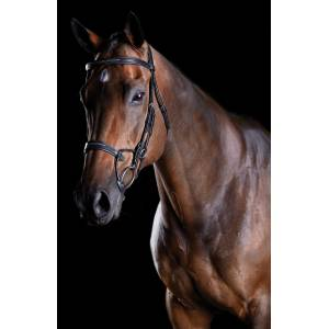 Collegiate Comfitec Fancy Stitch Bridle