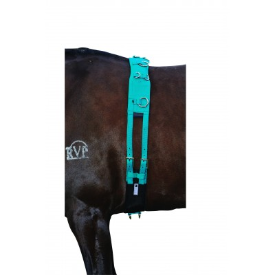 Kincade Brights Deluxe Equigrip Lunge Roller Girth