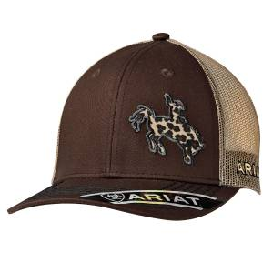 Ariat Ladies Rodeo Ball Cap