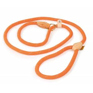 Shires Digby & Fox Reflective Slip Dog Lead