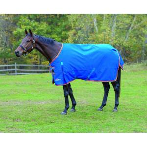 Shires Highlander Plus 200 Standard Neck