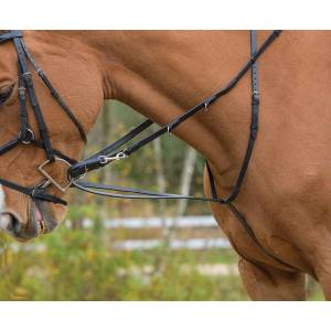 Shires Avignon German Martingale