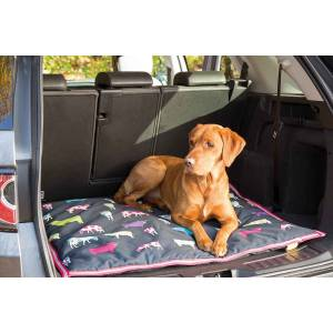Shires Digby & Fox Waterproof Dog Bed