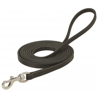 Weaver 10' Leather Training Lead