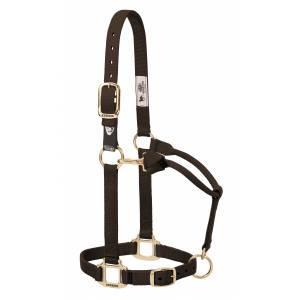Weaver Xtended Life Closure System Adjustable Breakaway Nylon Horse Halter