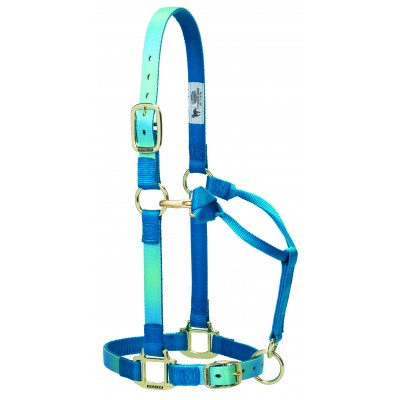 Weaver Nylon Ombre Adjustable Chin And Throat Snap Horse Halter
